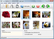 flickr gallery for blogspot Embed Flickr Into Iweb