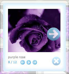flickr embeddable photo widget Stunning Gallery Wordpress Flickr