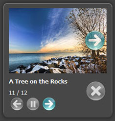 flickr embed albums in wordpress Web Gallery Using Flickr Rss Feed